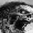 Profilový obrázek Deceased
