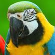 Profilový obrázek andiks