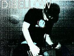 Profilový obrázek DiBellow