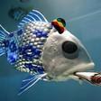 Profilový obrázek Dopefish