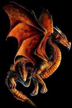Profilový obrázek dragonel