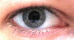 Profilový obrázek Eeeliška