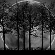 Profilový obrázek darkmoon