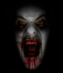 Profilový obrázek GIF242