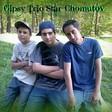 Profilový obrázek Gipsy Trio Star