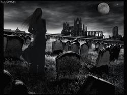 Profilový obrázek deaththroughmisadventure
