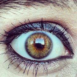 Profilový obrázek HallucinationFlower