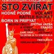 Profilový obrázek Hudební Festival Nohama Na Zemi