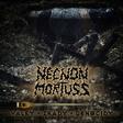 Profilový obrázek ILFIREN  / Necrosorth // Necnon Mortuss