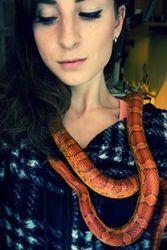 Profilový obrázek Kacinka888