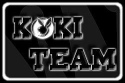 Profilový obrázek KoKi team