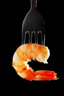Profilový obrázek Kreveta77