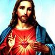 Profilový obrázek Kristova bassa