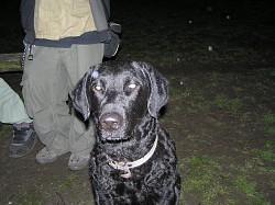 Profilový obrázek KuČe