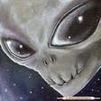 Profilový obrázek MARIGOLD - X
