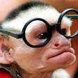 Profilový obrázek Monkeyyyy