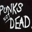 Profilový obrázek Mr.punkrockman