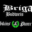 Profilový obrázek Oi Brigade Budweis