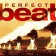 Profilový obrázek Perfect Beat