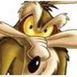 Profilový obrázek prasivy