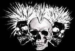 Profilový obrázek Punk a Metal Scéna