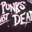 Profilový obrázek punker244