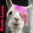 Profilový obrázek Punk-Lama