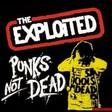 Profilový obrázek Punk.roman