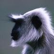 Profilový obrázek Mates_W