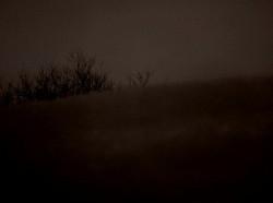 Profilový obrázek Utero