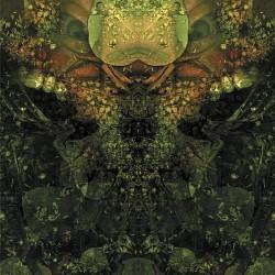 Profilový obrázek Vadervoyd