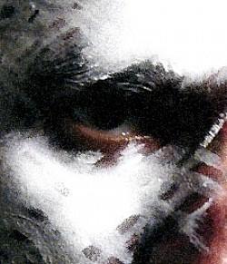 Profilový obrázek Vicarious