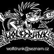 Profilový obrázek Wolfdrunk