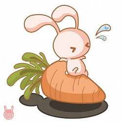 Profilový obrázek Zajíc
