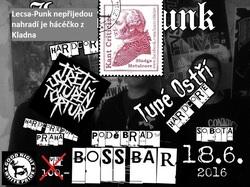 Profilový obrázek Lecsa-Punk