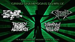Profilový obrázek Grind Shampoons Down IX