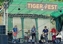 Profilový obrázek Tiger Fest