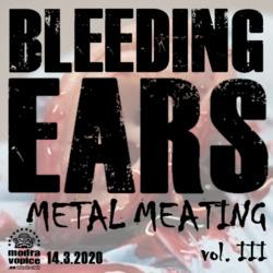 Profilový obrázek BLEEDING EARS METAL MEATING