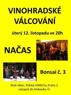 Profilový obrázek Vinohradské válcování s kapelami Načas a Bonsai č. 3