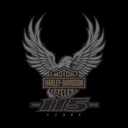 Profilový obrázek 115. sraz Harley Davidson